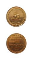 medalielowsize